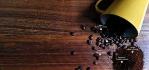 Perfil sensorial café ,agricultores, Café Las Margaritas Especial Tipo Exportación, Vendedores de Café Colombiano, café origen