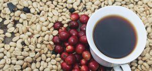 Café origen, café de finca, café notas a chocolate, cafe las margaritas