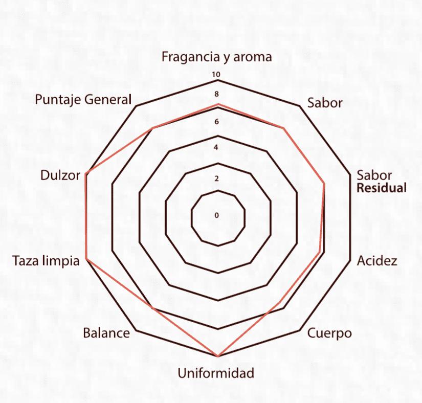 Perfil sensorial de Café Las Margaritas